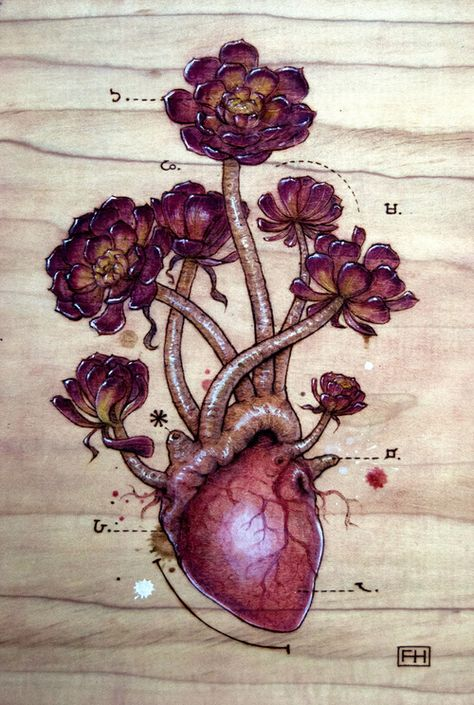 Heart Transplants series by Fay Helfer