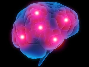 Stanford Researchers Outline The Role Of A Deep Brain Structure In Concussion Neuroskills Traumatic Brain Injury Brain Injury Symptoms Of Concussion