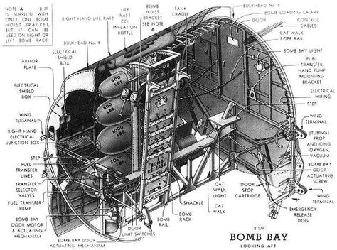 Terrific B 17 Bomb Bay Google Search B 17 Fortress Wiring Digital Resources Sapebecompassionincorg