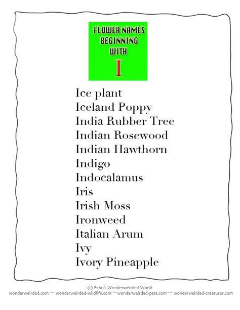 29+ 3 letter names plants ideas in 2021