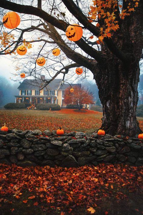 This Is Halloween - Classy Girls Wear Pearls - Fall feels - Autumn Fashion