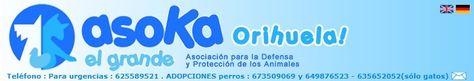 Centro De Protección De Orihuela