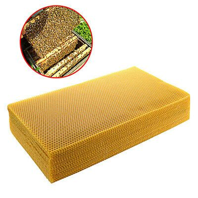 Plastic Yellow Nest Frame with Comb Foundation Apis Mellifera