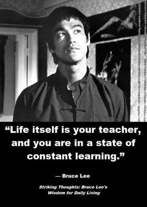 """Life itself is your teacher you are in state of constant learning"" - bruce lee (513720)"