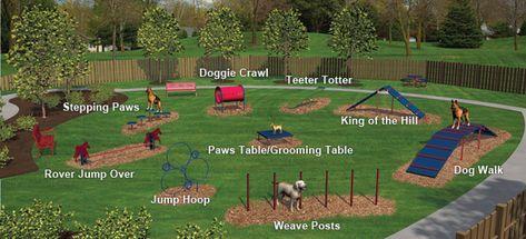 Expert Dog Obstacle Course Dogs Dog Walking Landscape Services