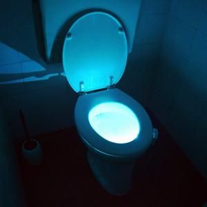 Toilet Seat Light Glow In 2020 Bowl Light Toilet Bowl Light Led Night Light