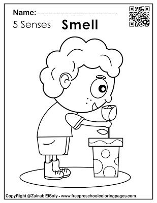 5 Senses Activities For Kids Free Printable Preschool Coloring