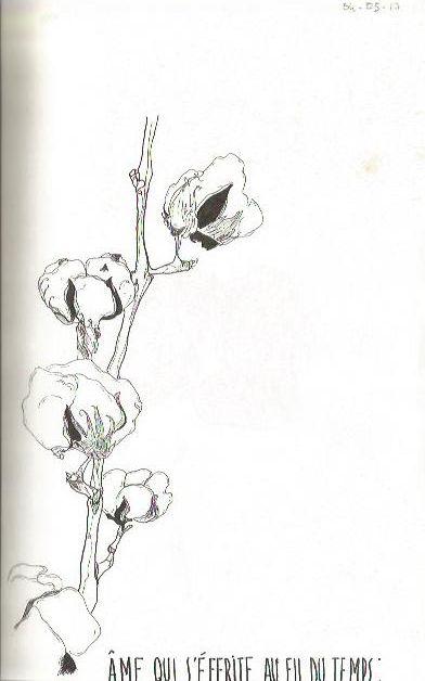 17+ Fleur de coton tatouage ideas