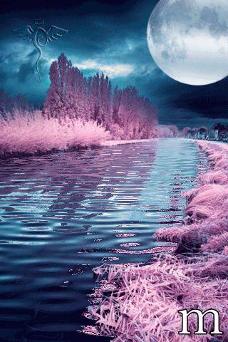 Gif Anime Plaisir Passion Belle Nature Photo Paysage Magnifique Belles Images Animees