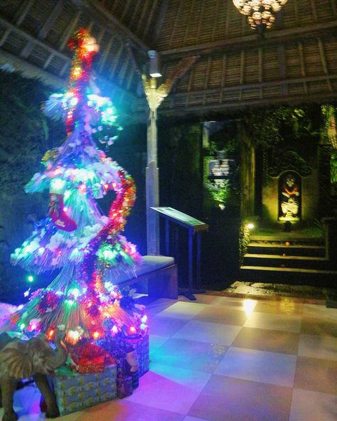 present Christmas tree on set at our...
