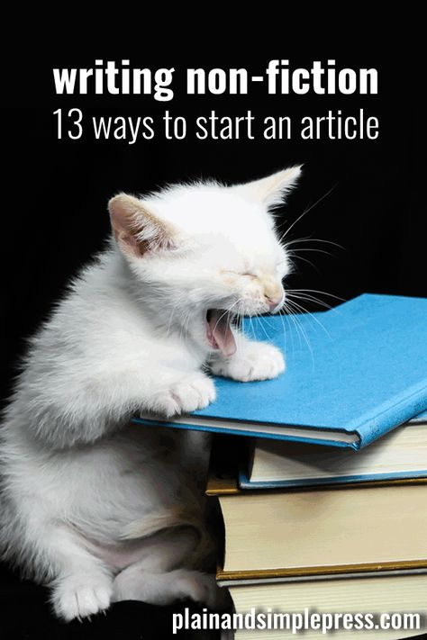 13 Kinds of Article Leads - Plain & Simple Press