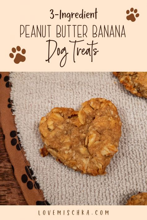 Looking for a simple dog treat recipe? These Peanut Butter Banana Dog Treats are INCREDIBLY easy and quick to make. They only require THREE ingredients! Cupcakes For Dogs Recipe, Dog Cookie Recipes, Easy Dog Treat Recipes, Dog Cupcakes, Dog Biscuit Recipes, Dog Food Recipes, Easy Dog Cake Recipe, Pumpkin Dog Treats, Doggie Treats