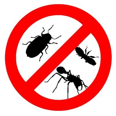 One Stop Solutions For Pest In Navi Mumbai Pest Control Services Pest Control Pest Solutions