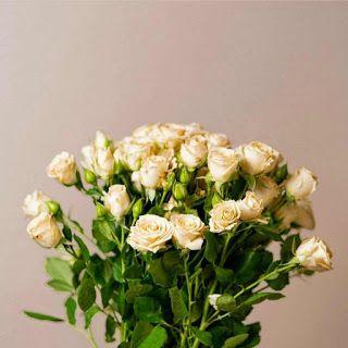 بوكيهات ورد شيك جدا اجمل صور بوكيهات ورد شيك جدا اجمل بوكيه ورد طبيعي Floral Wreath Rose Floral