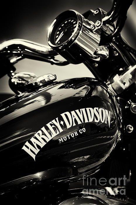 Samsung Galaxy S10 Harley Davidson Wallpaper Harley D Harley