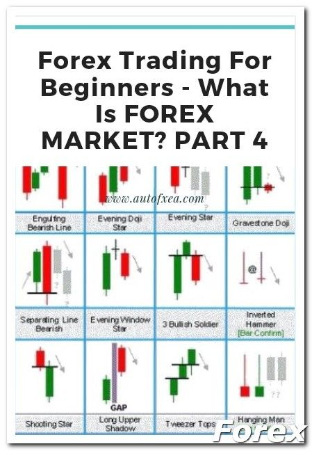 Forex tips.com forex training and education