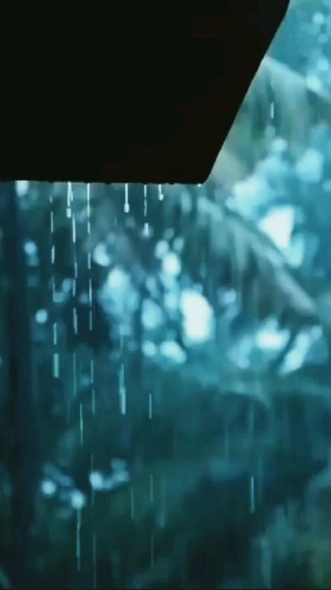 Rain lover 🌧️🌧️💧💧