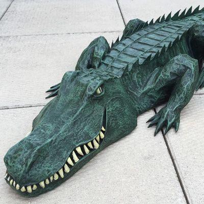 29 Alligator Ideas Alligator Crocodile Peter Pan Costumes