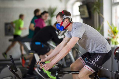 Home - wespseistark; fitnessstudio merseburg; betriebliche gesundheitsförderung leipzig und halle (saale); leistungsdiagnostik