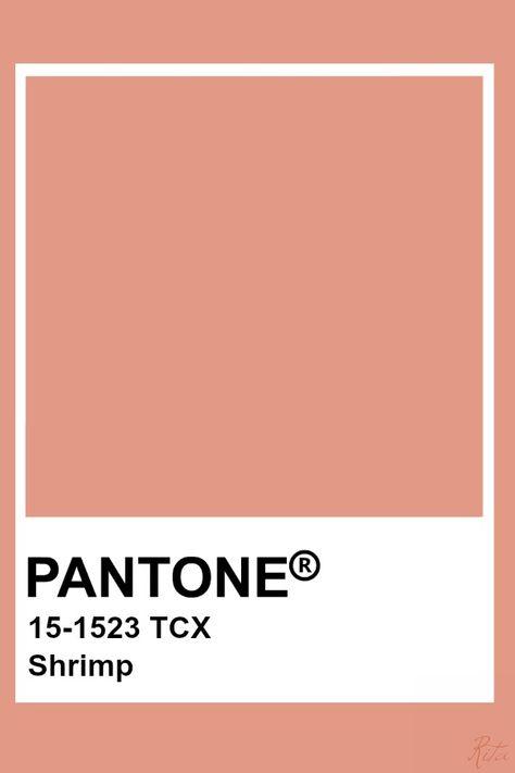 Pantone Shrimp
