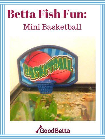 Dollar Tree Toy Turned Betta Fish Fun Mini Basketball Hoop For A Betta Fish Tank Can You Train Your Betta To Play Basketbal Betta Fish Betta Mini Basketballs