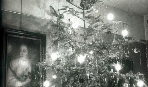 Ein Weihnachtsbaum für alle?