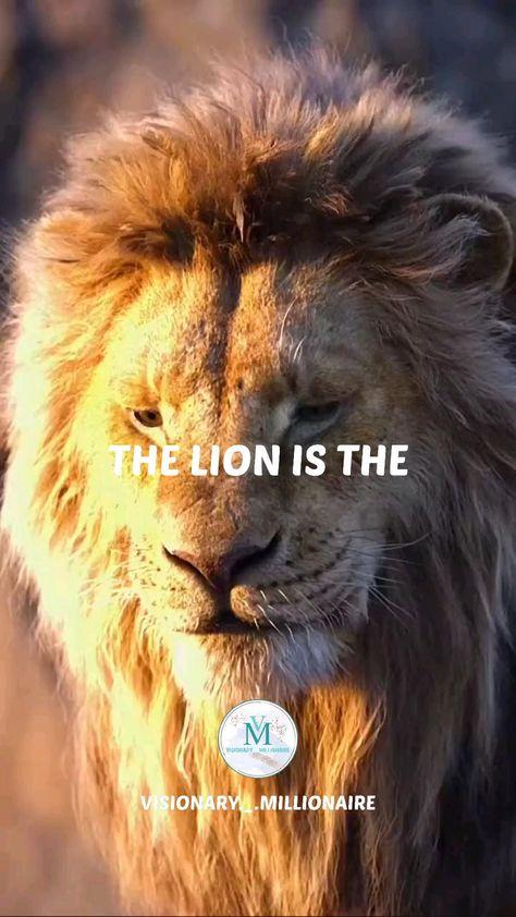 Motivational video #lion #king #attitude