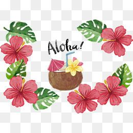 Coconut Vector Material Trip Hawaii Island Png Transparent Clipart Image And Psd File For Free Download Free Watercolor Flowers Flower Png Images Vector Flowers