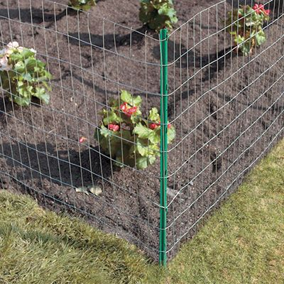 How To Build A Wire Fence Chicken Wire Fence Welded Wire Fence Hog Wire Fence