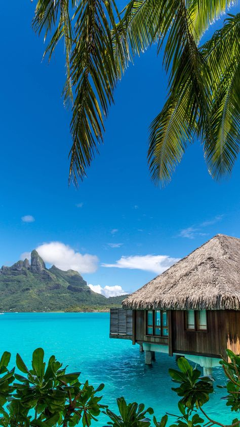 Looking for that special #honeymoon destination? This resort in #Borabora #FrenchPolynesia could be your dream location! ❤️️🌴🌊 #travel #inspiration