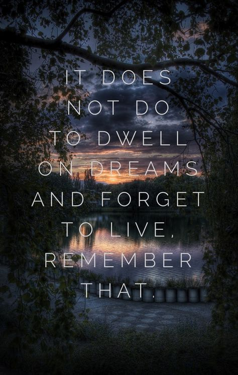 It Does Not Do To Dwell On Dreams And Forget To Live Harry Potter Quotes Wallpaper Harry Potter Quotes Harry Potter Iphone Wallpaper