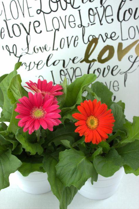 """Love"" wall decor from @marshalls"