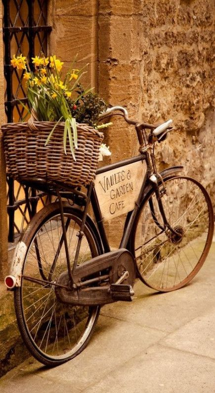 36 Ideas For Garden Aesthetic Brown Bicycle Vintage Bicycles Bicycle Art