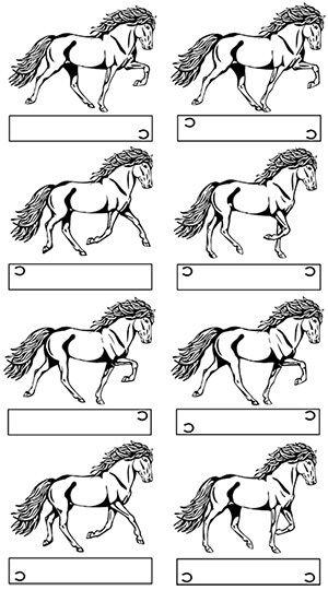 Fussfolge Im Tolt Pferde Malen Reiten Islandpferde
