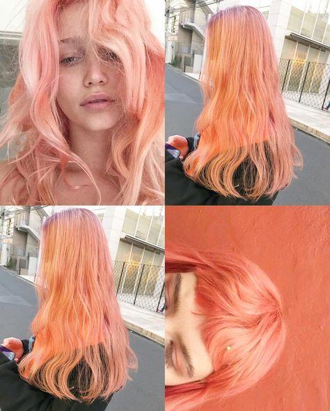 アプリコットピーチ ピンクとオレンジが混ざった色 オレンジ