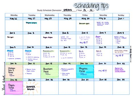 StudyInspo How To Make A Summer Study Schedule Hello My Worker