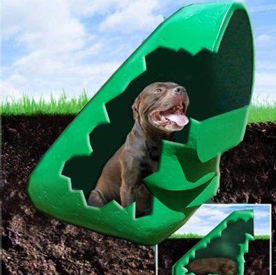 Liggins Dogeden Kennel Series Dog House Dog Houses Wood Dog