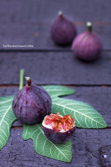 Simply Figs☆