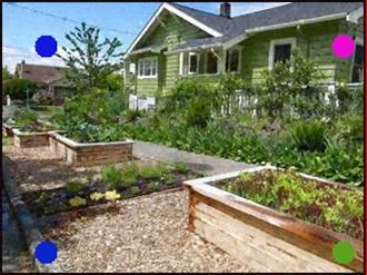 Parking Strip Raised Beds Traditional Landscape Rain Water Collection Diy Backyard
