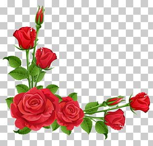 Flower Garden Perennial Plant Pixabay Red Roses Transparent Red Roses Frame Png Clipart Floral Illustration Free Flower Illustration Pink Floral Painting