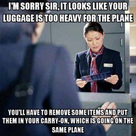 ff2741f055b69f656735534a4fa0371a--funny-travel-travel-humor.jpg