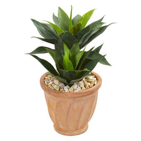 Home Artificial Plants Agave Plant Plants
