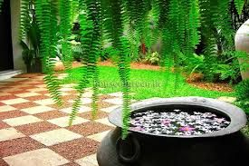 Image Result For Sri Lanka House Landscape Design Garden Design Diy Landscaping Garden Landscape Design