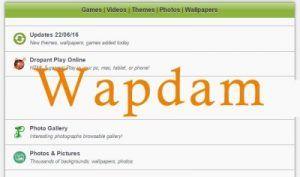 Wapdam Series SEX,
