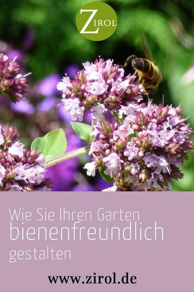 Wie Sie Ihren Garten Bienenfreundlich Gestalten Bienenfreundliche Pflanzen Bienenfreundlicher Garten Freundlich