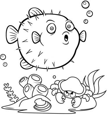 Pin By Illustration Designer On Coloring Book Pages Fish Coloring Page Fish Drawing For Kids Animal Coloring Pages