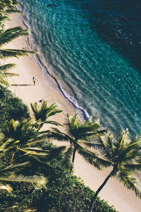 Where To Stay In Miami For Spring Break