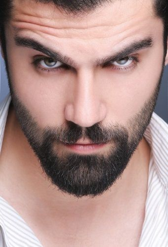 New Look Dadhi Style Image - Beards Styles