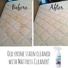Gross Clean Stains Out Of Your Mattress Today Norwex Norwex
