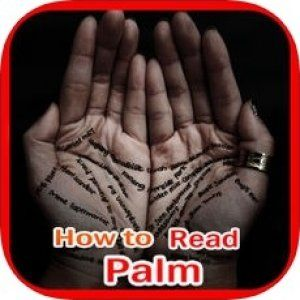 Best Palm Reading Apps Reading Apps Palm Reading App